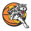 WABL Coaching Applications: Willetton Tigers